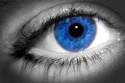Eye shadow Palette to match blue eyes: Starry Night, £4