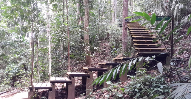 I am not sure if Taman Negara provides guide services at a cheaper price. We were lucky to have one from our resort. At the Canopy Walkway ... & My Heart Soars: Taman Negara : Part 7 - Day 3 : Canopy Walkway ...