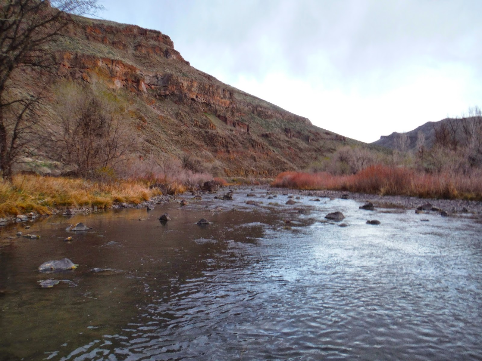 Erik s fly fishing blog for Owyhee river fly fishing