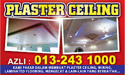 Plaster Ceiling Specialist