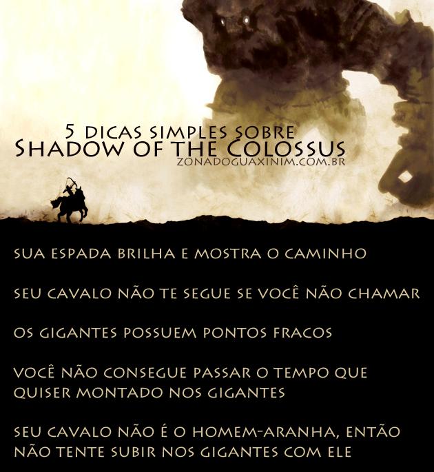 5 dicas simples sobre Shadow of the Colossus