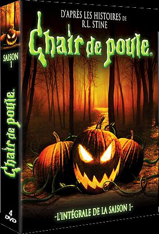 Chair De Poule Dvd Coffret Integral Saison 1