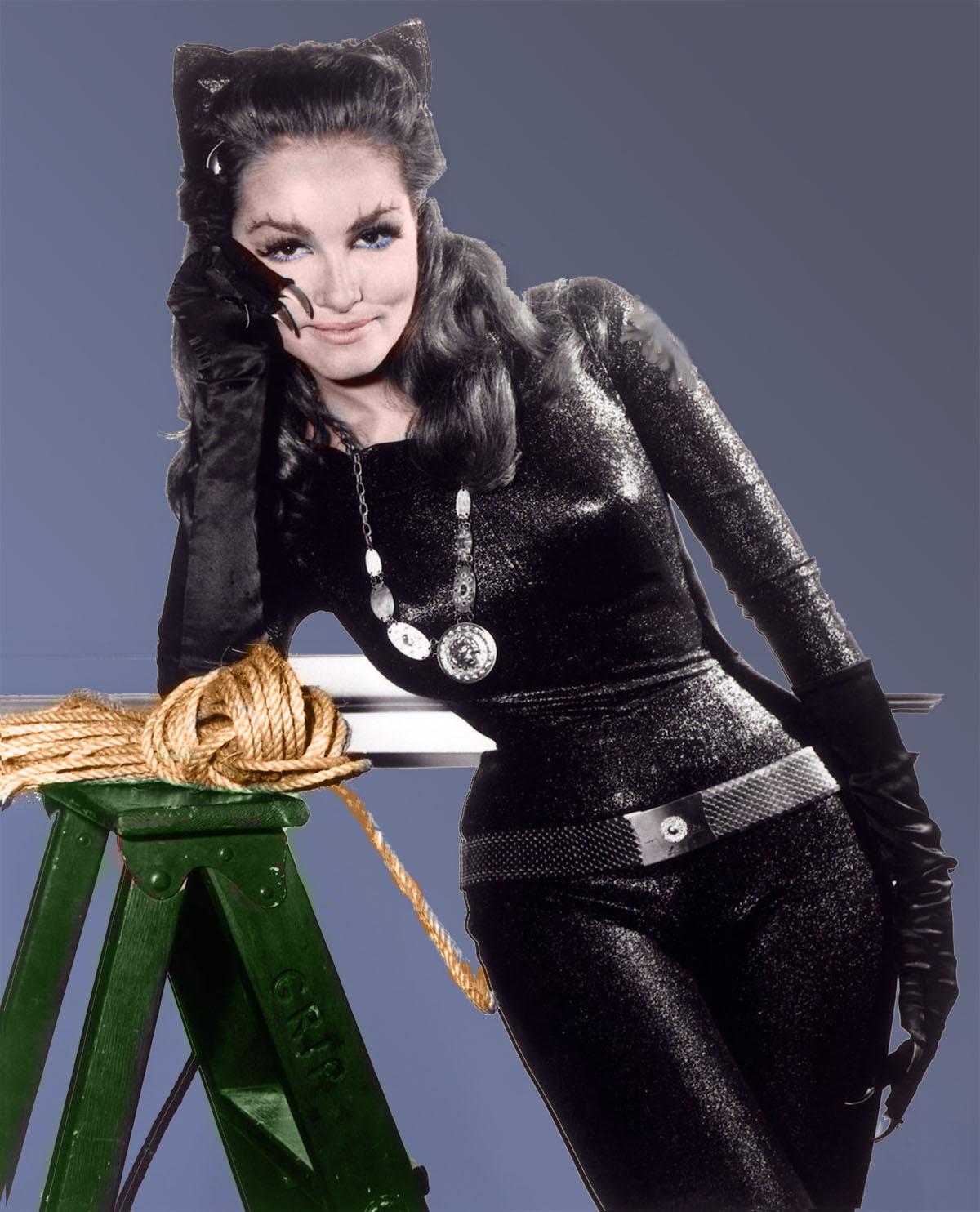 http://4.bp.blogspot.com/-782C2DHsOqA/Tjxm5NflcNI/AAAAAAAA8AU/7C_kCVciYic/s1600/julie_newmar_catwoman.jpg