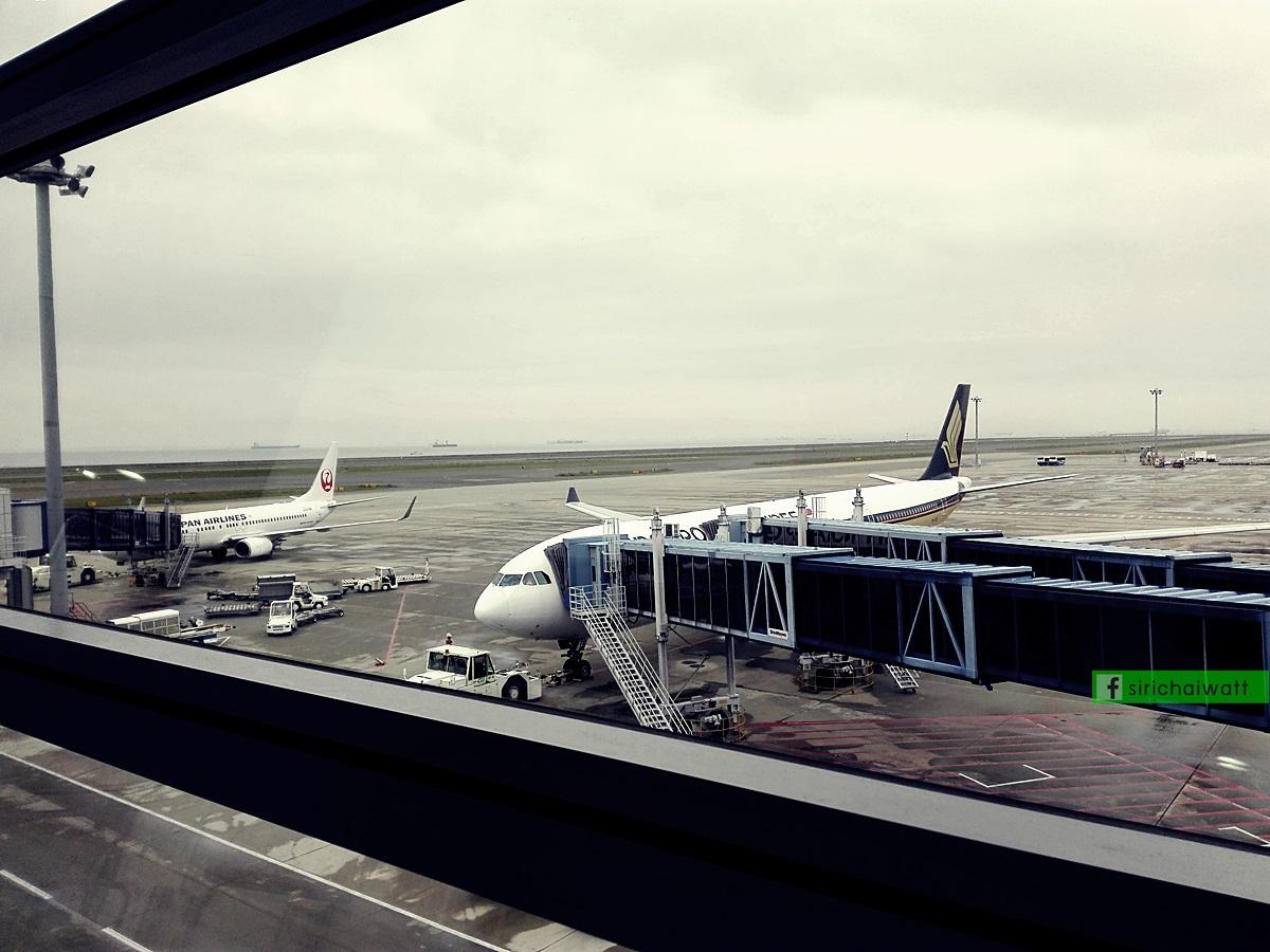 สนามบิน ชูบุ (Chubu Centrair) นาโกย่า (Nagoya)