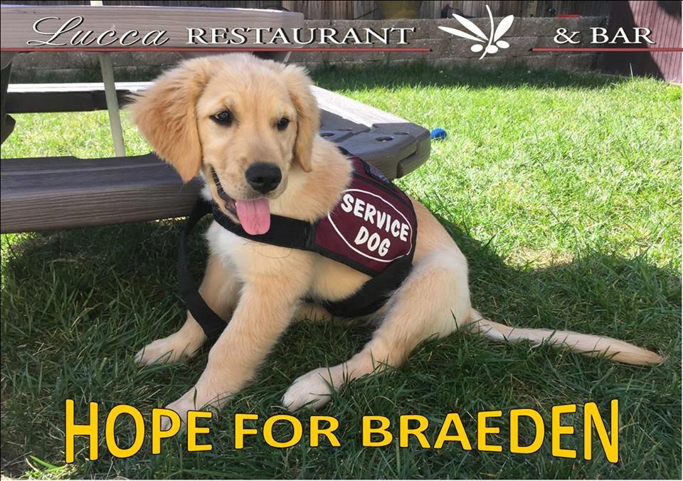 Help Braeden get a Service Dog
