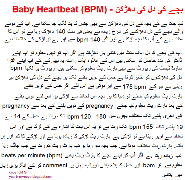 Baby heartbeat sex can suggest