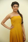 Pranitha latest dazzling pics-thumbnail-6