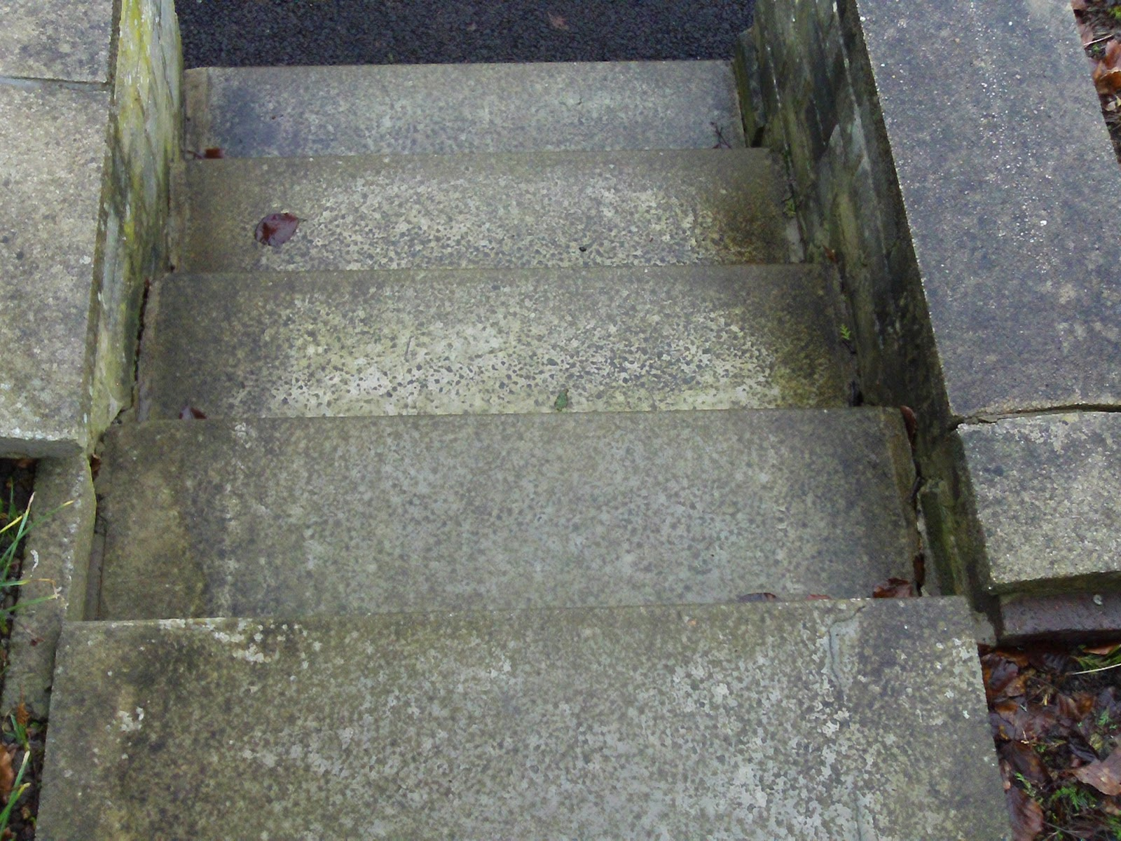 Power cleaning blog paving slabs paths and steps get the for Cleaning concrete steps