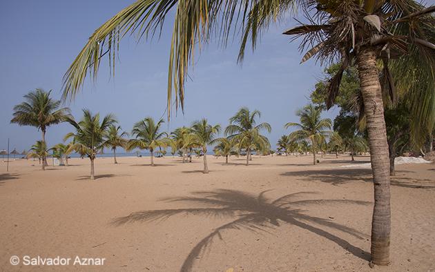 http://www.diariosdeunfotografodeviajes.com/2014/06/region-de-mbour-somone-y-saly.html