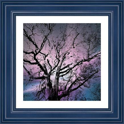 Online Store - My Fine Art America Store
