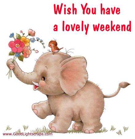 Bisarbeat happy weekend - Week end a nice ...