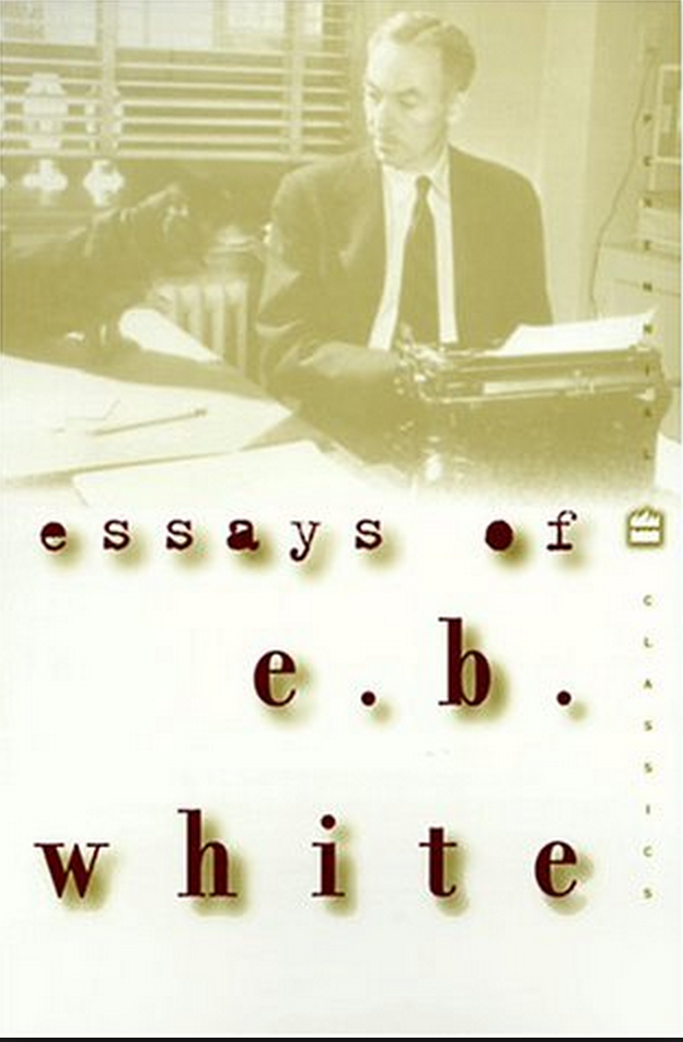 essays of e.b. white 1977 A personal essay is a short work of characterized by a sense of intimacy and a manner also called a personal statement.