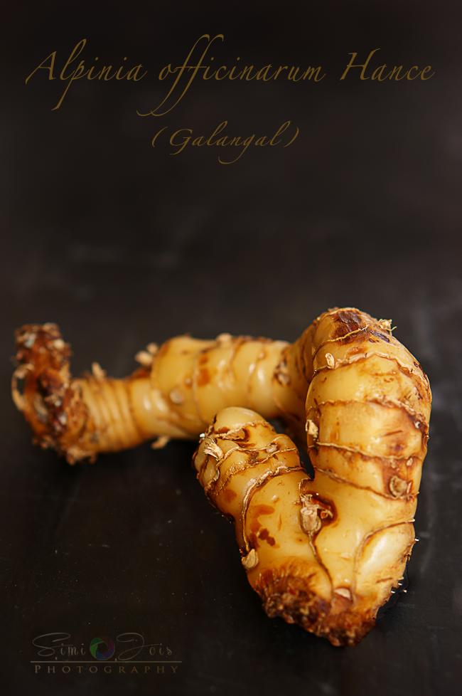 #StirFriedNoodles #AsianNoodles #CurryNoodles #NoodlesRecipe #Recipe