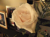 OLRWA Speaker Chair Appreciation Rose!