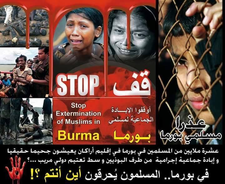 التعاون الإسلامي تطالب ميانمار بوقف 11350177_854470407960550_1880672551_n.jpg
