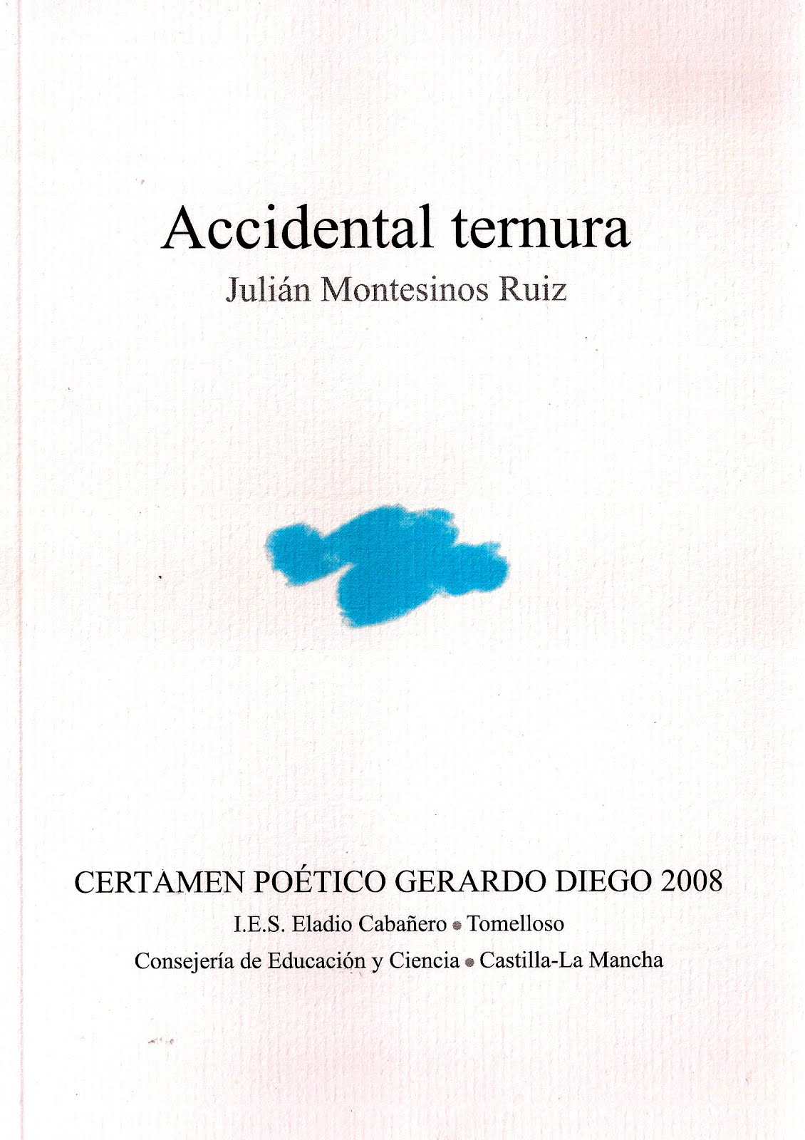 ACCIDENTAL TERNURA (2008)