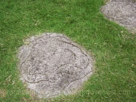 With The Neutral Grayish Color Of Concrete, They Looked Like Natural Rock.  Over Time Though, Dirt And Stains Discolored The Garden Stepping Stones.