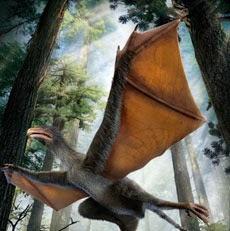 Minidinossauro com asas de morcego é descoberto na China