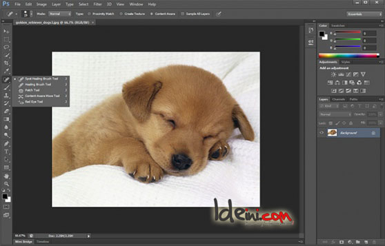 Photoshop CS6, Free Download