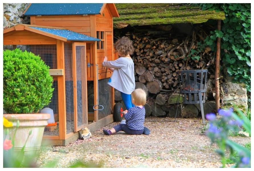 Le jardin des poussins notre poulailler devient mobile - Comment supprimer le liseron au jardin ...