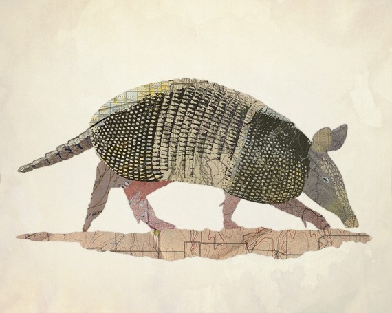 07-Texas-Nine-Banded-Armadillo-Jason-LaFerrera-Cartography-Shaped-to-make-Map-Animals-www-designstack-co