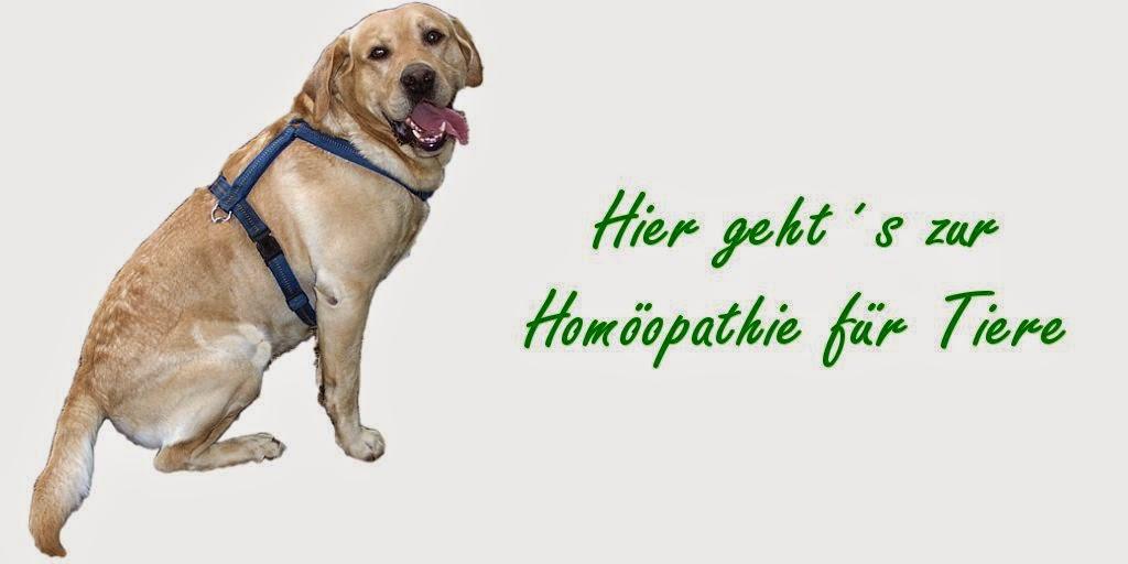 http://www.homoeopathie-fuer-tiere.eu/