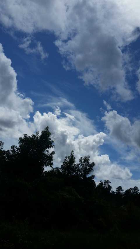 sky photo 1