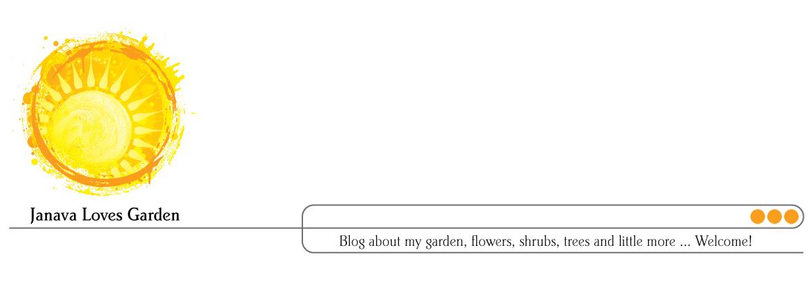 Janava Loves Garden