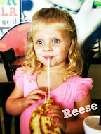 Reese is our 4 year old, sweet, spicy, feisty gal who doesn't take anything from anyone!