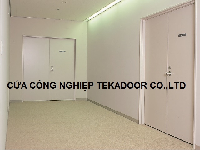 Cửa chống cháy công nghiệp Steel Fire-rate/Fire-proof door