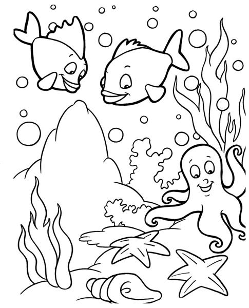 ocean animals plants coloring pages - photo#46
