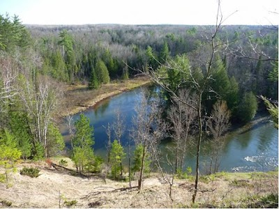Michigan DNR Acquires 280 acres in the Manistee River Watershed