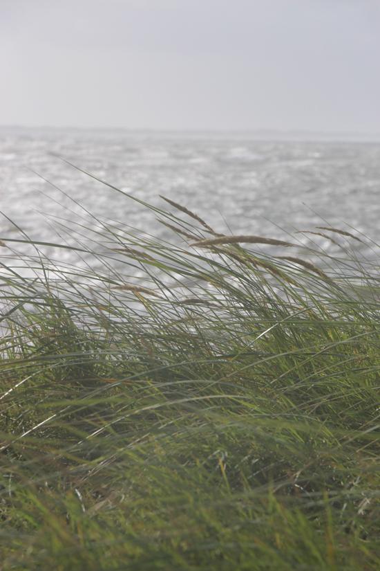 binedoro Blog, Norderney, Inselliebe, Nordsee, Kurzurlaub, Ostfriesland, Meer
