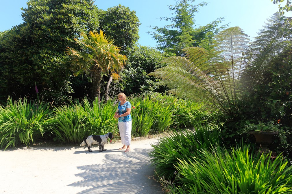 phils photographic adventures: Lost Gardens of Heligan 8th july ...
