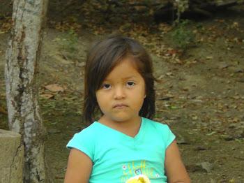 Niña de Cuatro Años afirma que un Extraterrestre la saludó.