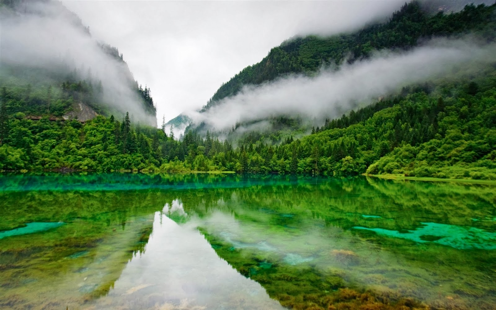 Paradise Lake Green Nature Widescreen HD Desktop Backgrounds Images Wallpapers