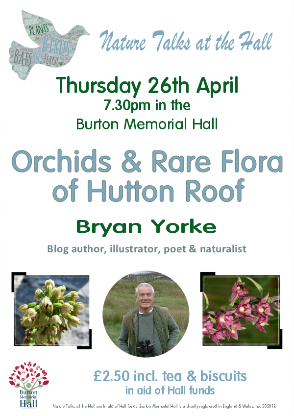 Orchids and Rare Flora of Hutton Roof