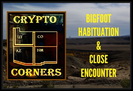 Phantoms and monsters pulse of the paranormal crypto four corners bigfoot habituation close encounter fandeluxe Choice Image