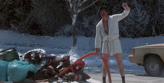 Mr. Movie: National Lampoon's Christmas Vacation ( Movie Review)