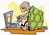 Δραστηριότητες στον Χελωνόκοσμο. (κλικ στην εικόνα για παραδείγματα εφαρμογής).