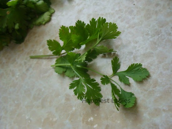 natural skin care cilantro