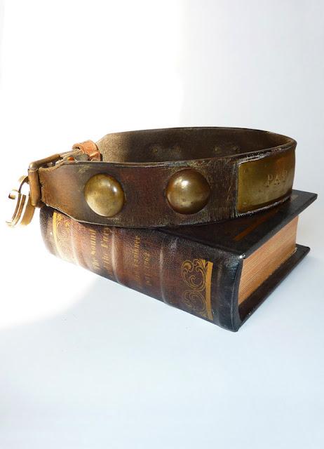 antique dog collar, rare dog collar, victorian dog collar, antique leather and brass dog collaer