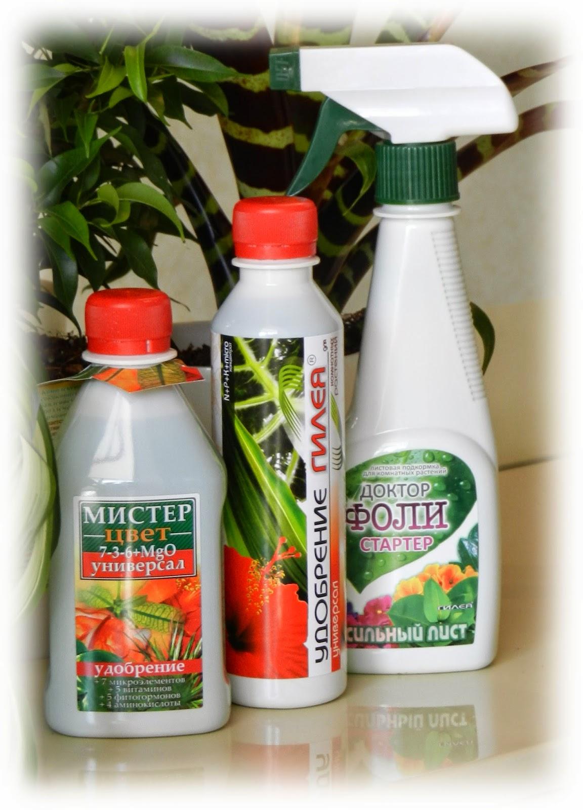 какое лучшее удобрение для комнатных растений