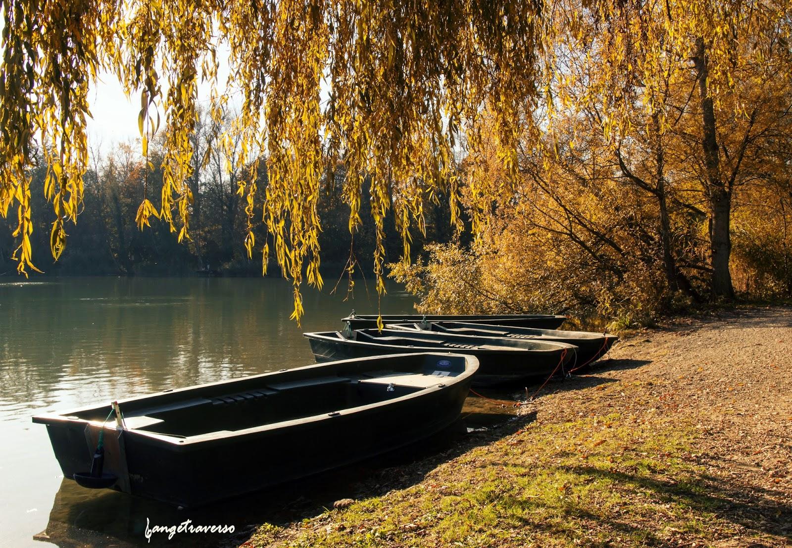 Couleurs automnales depuis le plan d'eau de Rumilly, Haute-Savoie