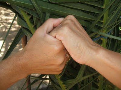 amistad+tomados de la mano