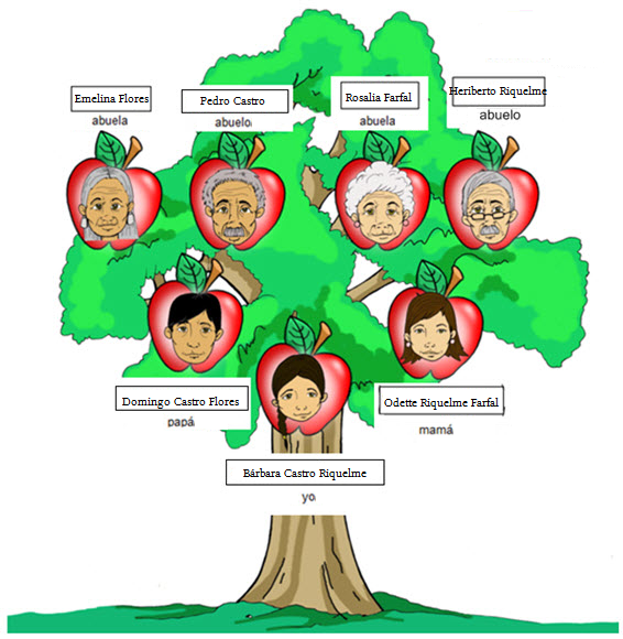 imagen de un arbol genealogico en inglés imagui