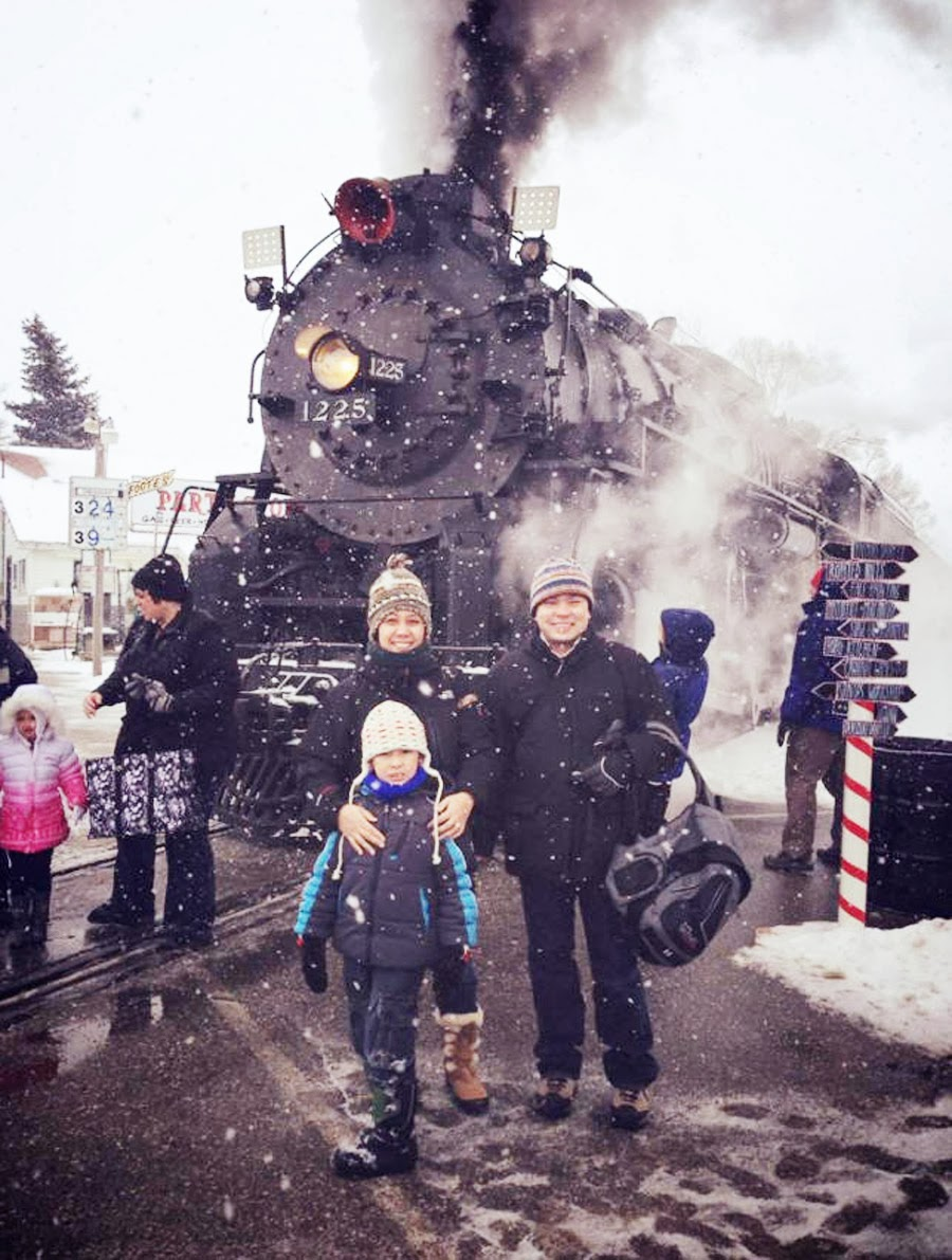 essay on to a locomotive in winter A literary lexicon essay--literally a whitman's vapor-pennants and evocations of golden brass and silvery steel in to a locomotive in winter.