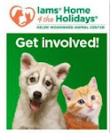 IAMS Home-4-the-Holidays Pet Adoption Drive