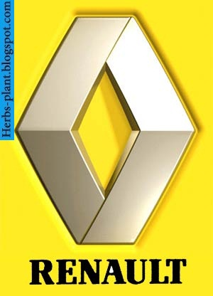 Renault fluence car 2013 logo - صور شعار سيارة رينو فلوانس 2013