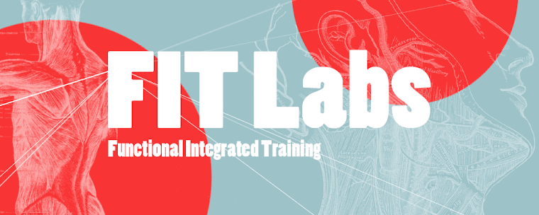 FIT Labs